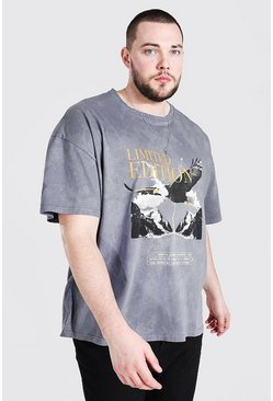 Slate Plus Size Eagle Print Overdye Loose Fit T-Shirt