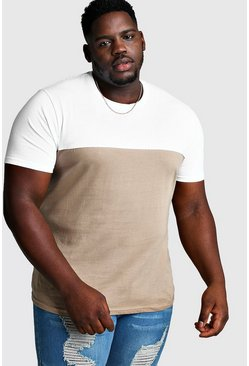 Mens White Big And Tall Colour Block T-Shirt