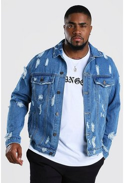 Mid blue Big And Tall Distressed Denim Jacket