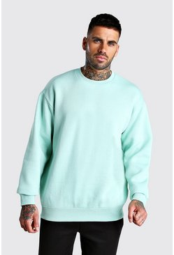 Mint Basic Oversized Fleece Sweatshirt