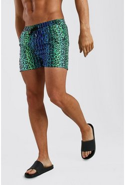 Blue Short Length Swim Short In Leopard Stripe