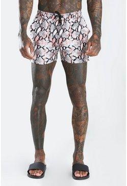 Pink Snake Print Shorts
