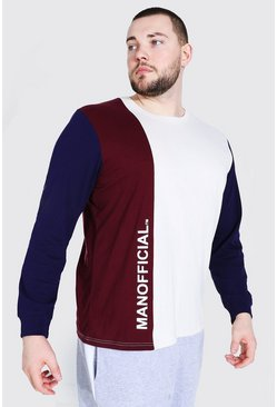 Ecru Plus Size Colour Block Long Sleeve T-Shirt