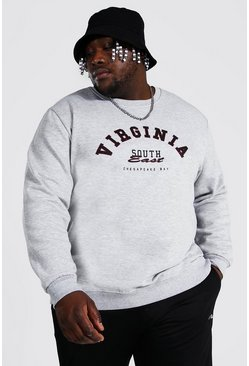 Plus Size Virginia Varsity Print Sweatshirt, Grey marl